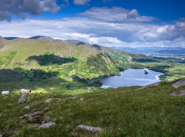 The area around Glenmore Lake and the Healy Pass on the Beara Peninsula is a place that just seems to soothe all those who pass this way.
