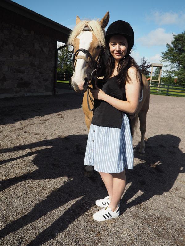 europe-ponies1