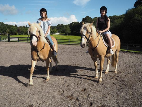 europe-ponies2