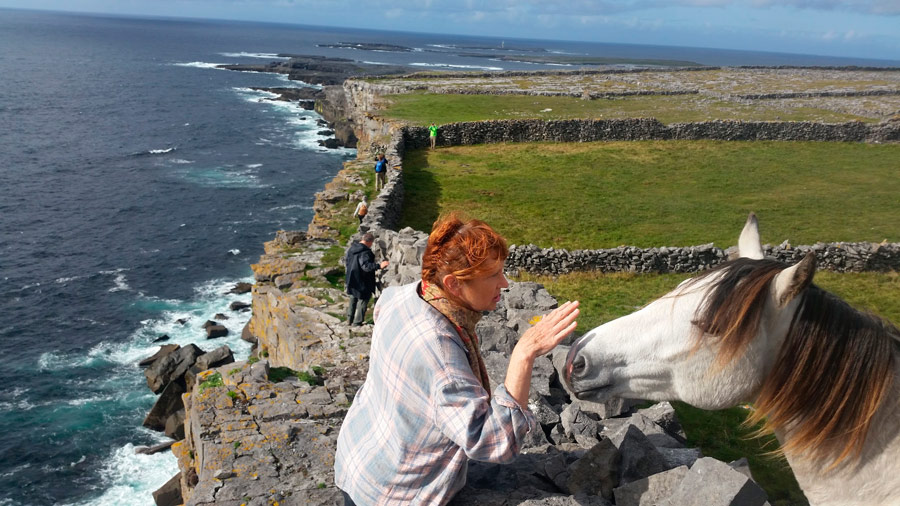 A horse whisperer on Aran