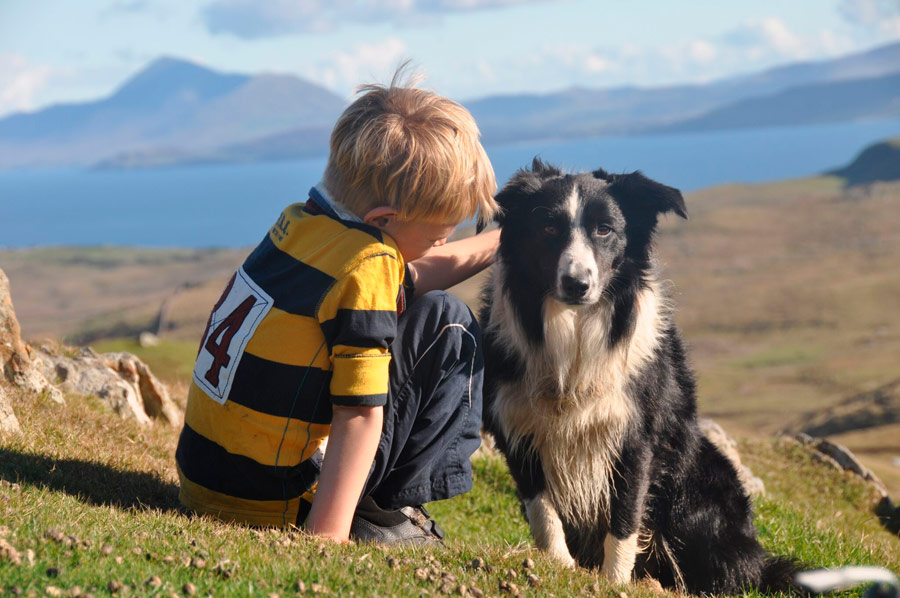 Alex O'Toole and his sheepdog