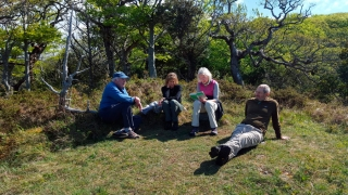 Poetry reading in the Killarney woods