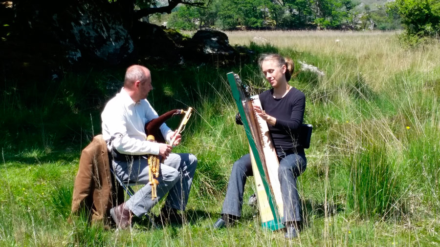 The harp and uilleann pipes are among our oldest instruments